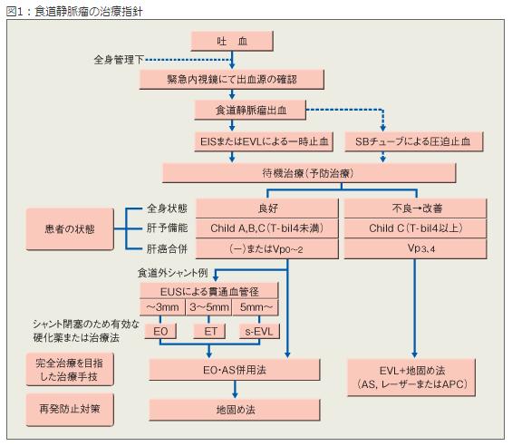 食道静脈瘤2